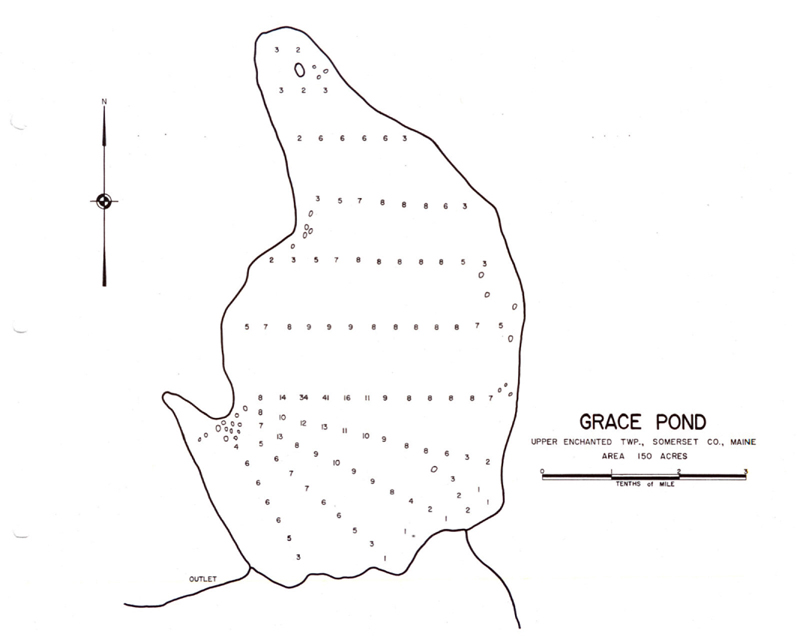Grace Pond Depths